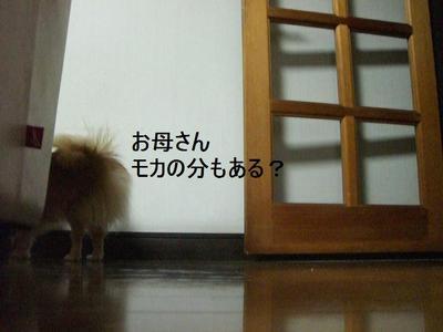2009_0105_164417cimg0230