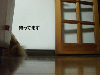 2009_0105_164425cimg0231