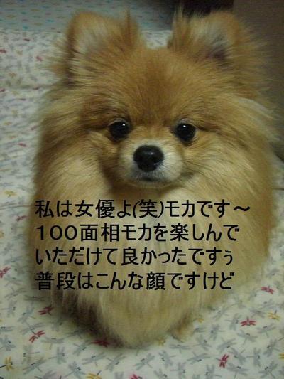 2009_0305_193232cimg1084_2