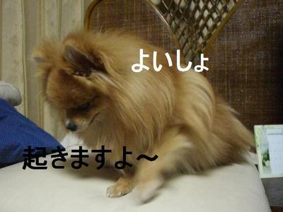 2009_0312_194323cimg1475