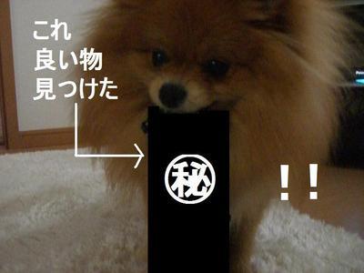 2009_0412_161837cimg1985_2