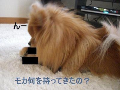 2009_0412_161852cimg1987_2