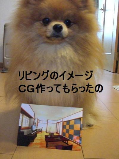 2009_0421_133151cimg2149
