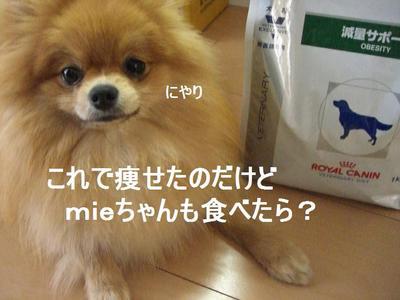 2009_0424_174501cimg2190