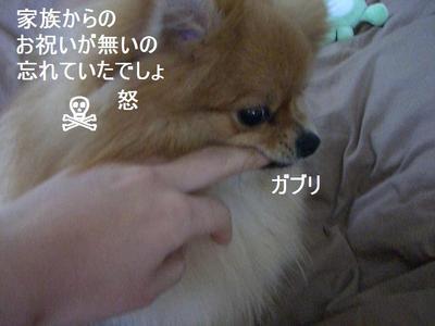 2009_0426_130101cimg2213