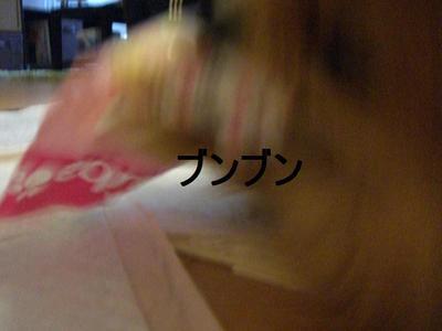 2009_0421_143222cimg2152_2