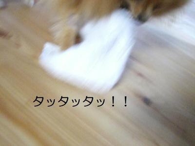 2009_0523_151405cimg2773