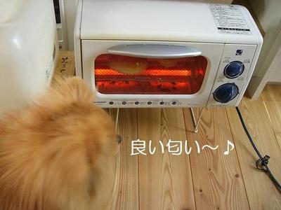 2009_0527_085843cimg2785_2