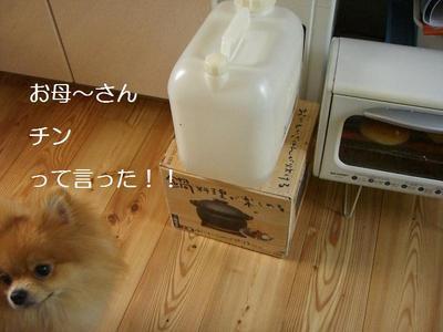 2009_0527_085855cimg2786
