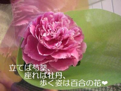 2009_0603_153356cimg2917