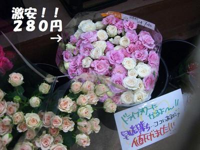 2009_0617_161557cimg3236