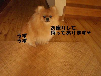 2009_0618_084137cimg3246