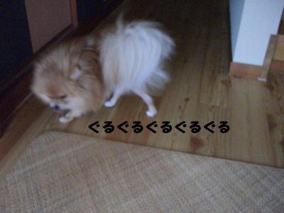2009_0618_084148cimg3248