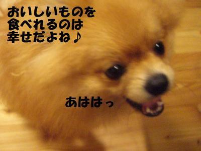 2009_0622_175445cimg3304