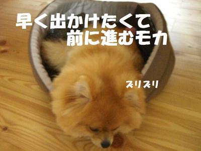 2009_0625_170001cimg3546