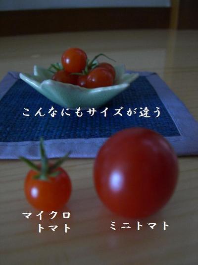 2009_0629_151528cimg3652