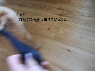 2009_0630_170021cimg3678