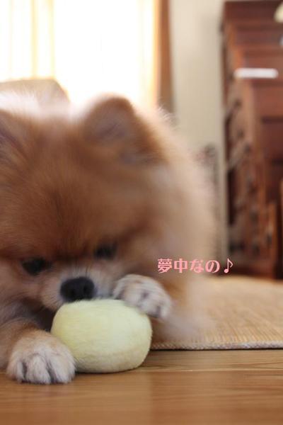 2010_0827_001003img_7016