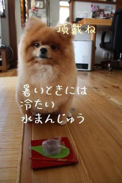 2012_0724_041609img_4577